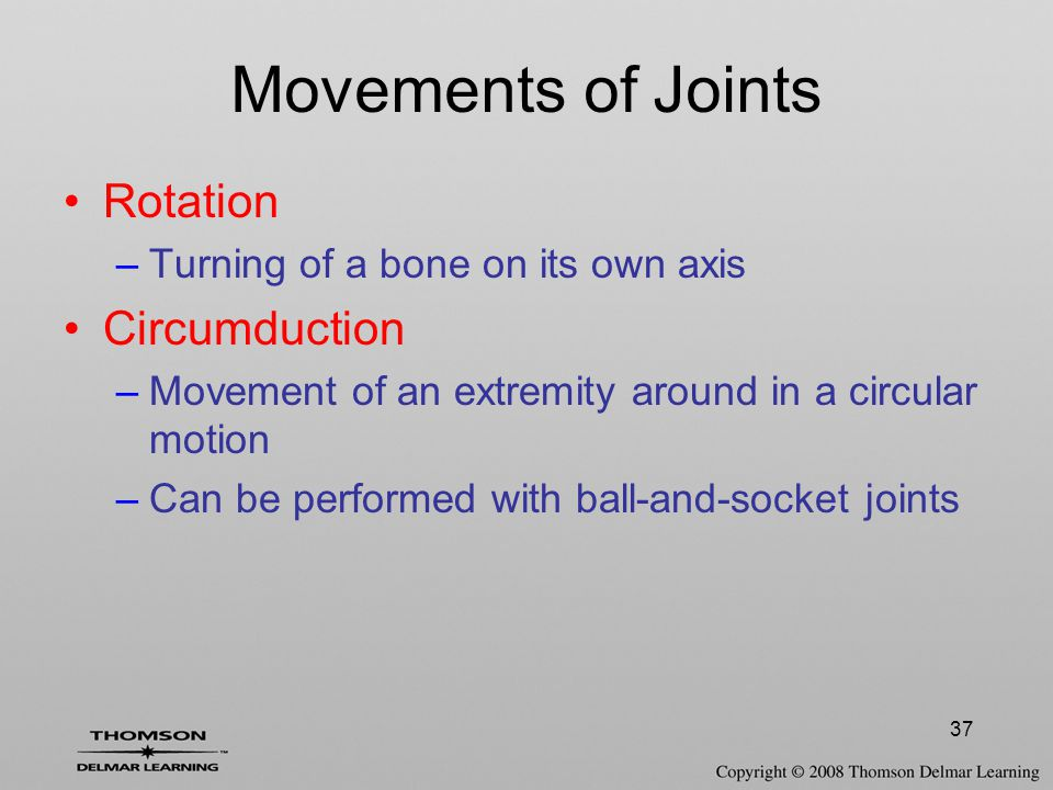 37 Movements of Joints Rotation –Turning of a bone on its own axis Circumduction –Movement of an extremity around in a circular motion –Can be performed with ball-and-socket joints