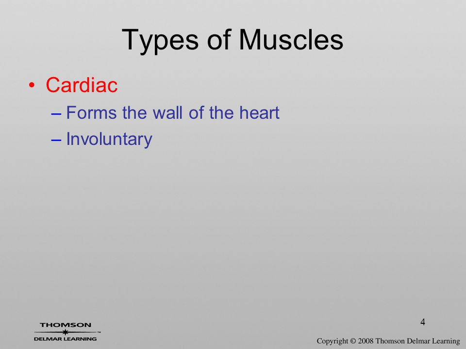4 Cardiac –Forms the wall of the heart –Involuntary Types of Muscles