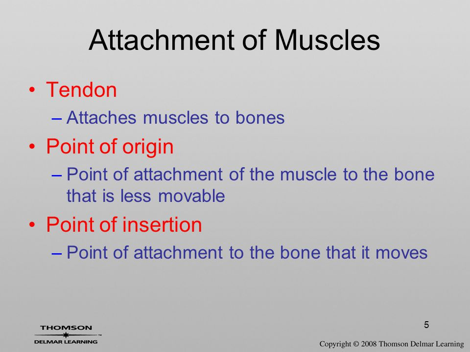 26 Classification of Joints (Structural)