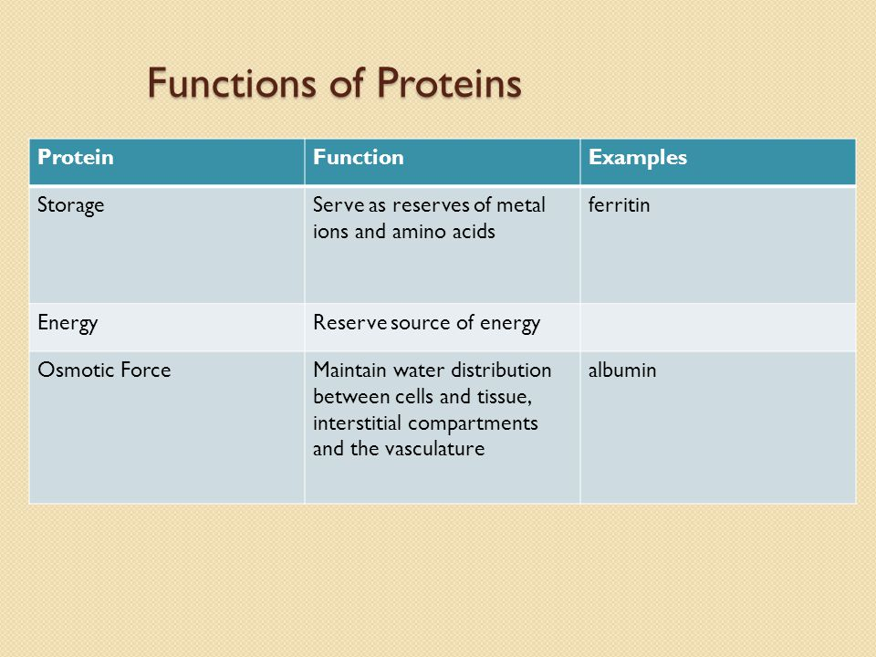 Functions of Proteins ProteinFunctionExamples StorageServe as reserves of metal ions and amino acids ferritin EnergyReserve source of energy Osmotic ForceMaintain water distribution between cells and tissue, interstitial compartments and the vasculature albumin