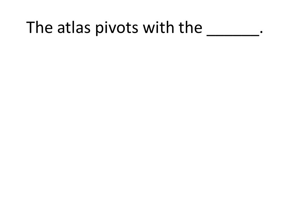 The atlas pivots with the ______.