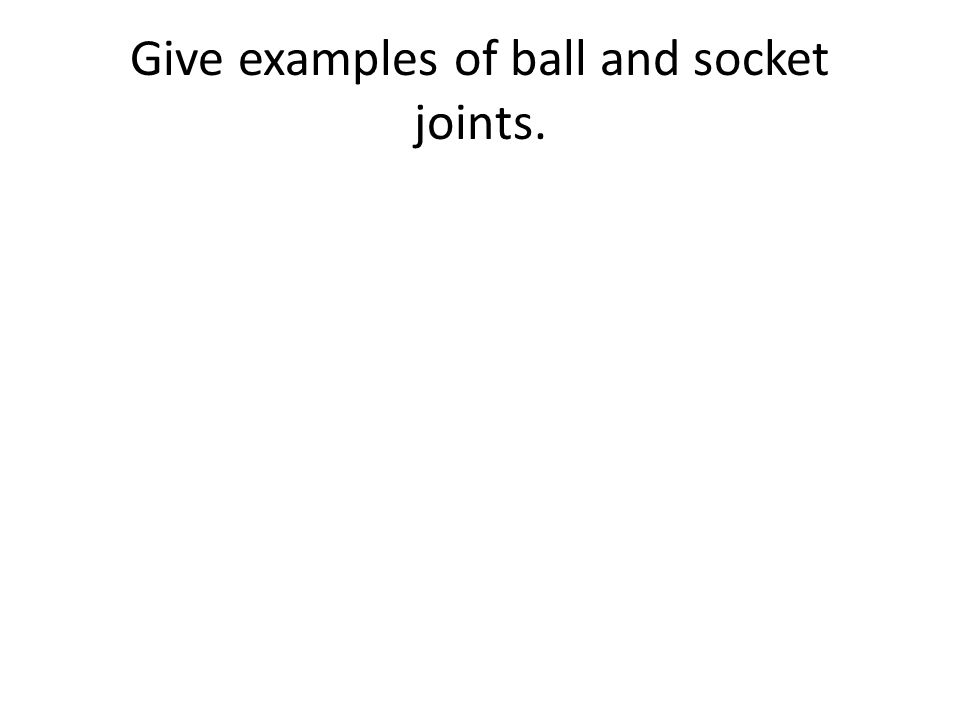 Give examples of ball and socket joints.