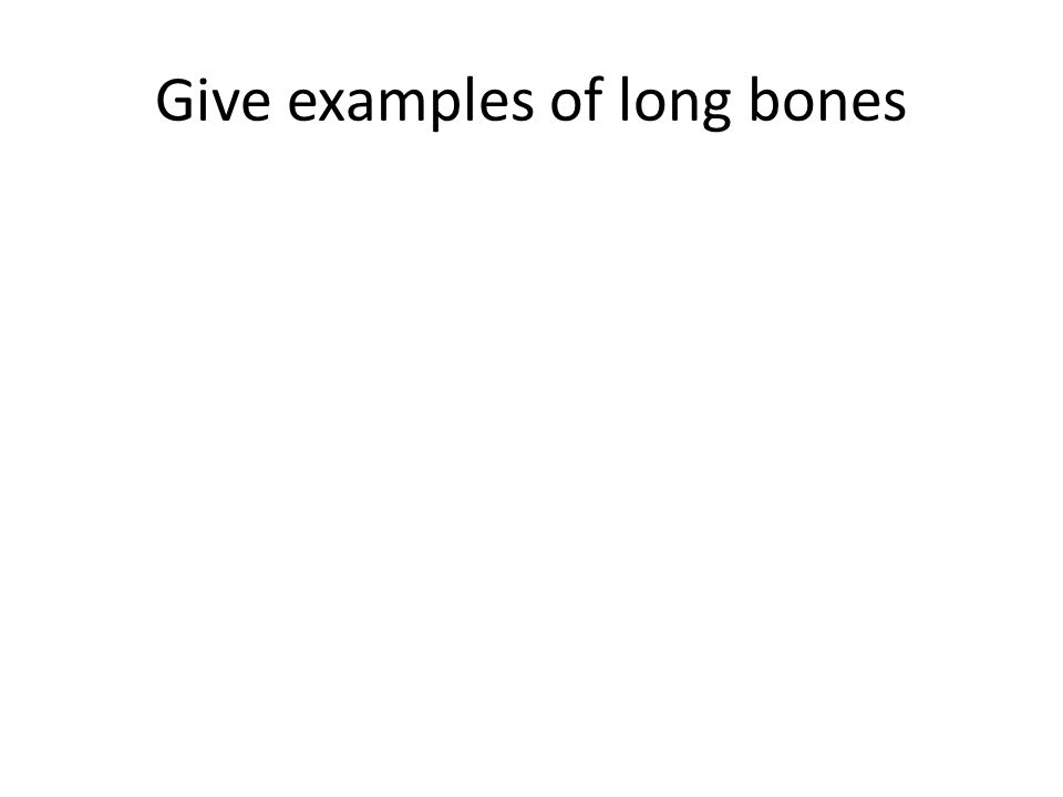 Give examples of long bones