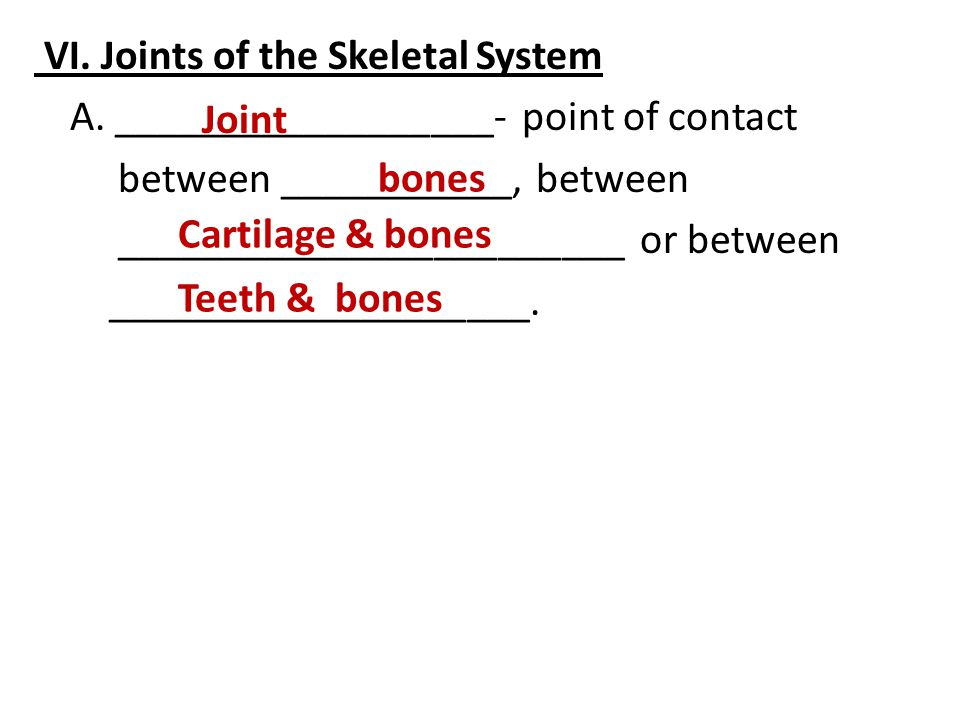 VI.Joints of the Skeletal System A.