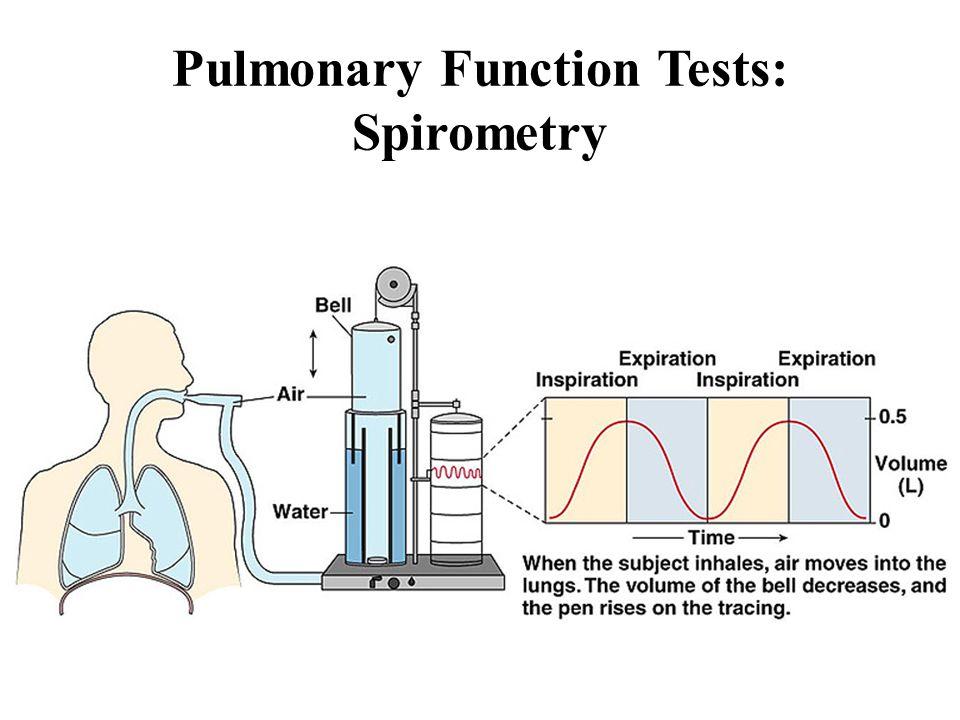 Pulmonary Function Tests: Spirometry