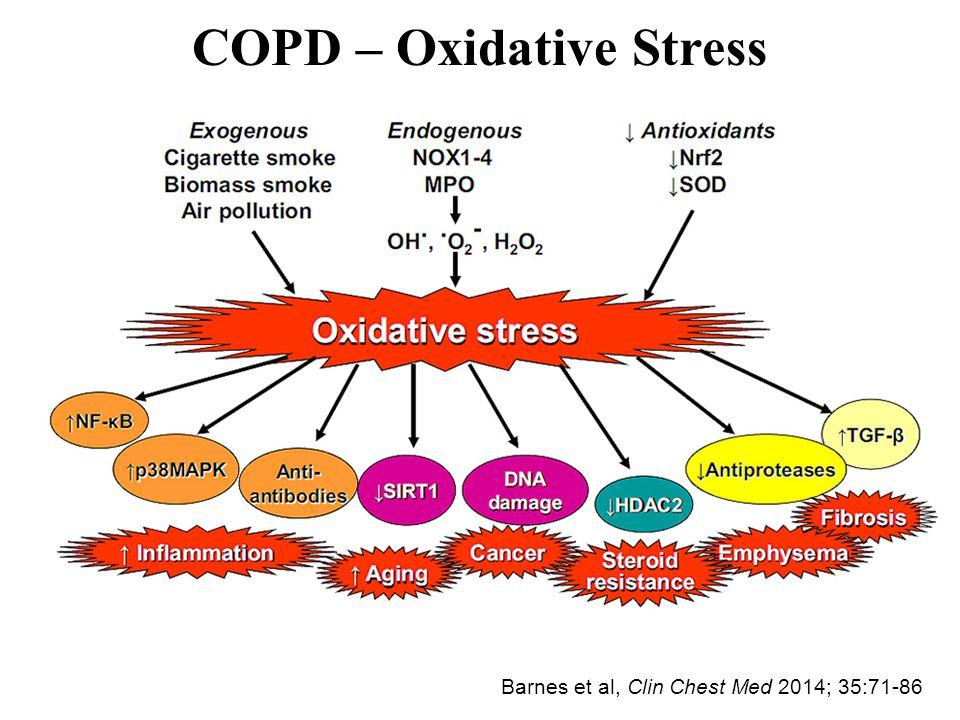 COPD – Oxidative Stress Barnes et al, Clin Chest Med 2014; 35:71-86