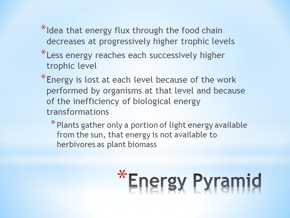 * Idea that energy flux through the food chain decreases at progressively higher trophic levels * Less energy reaches each successively higher trophic level * Energy is lost at each level because of the work performed by organisms at that level and because of the inefficiency of biological energy transformations * Plants gather only a portion of light energy available from the sun, that energy is not available to herbivores as plant biomass