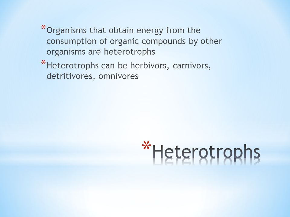 * Organisms that obtain energy from the consumption of organic compounds by other organisms are heterotrophs * Heterotrophs can be herbivors, carnivors, detritivores, omnivores