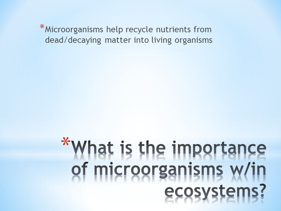 * Microorganisms help recycle nutrients from dead/decaying matter into living organisms