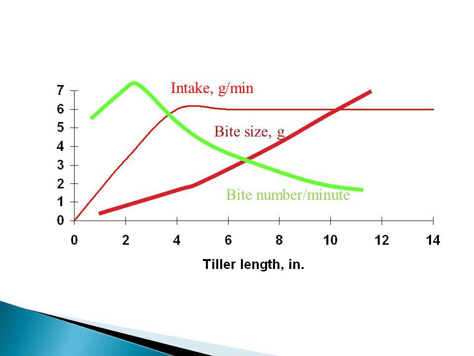 Bite number/minute Bite size, g Intake, g/min