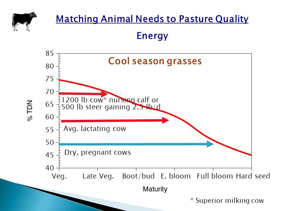 Matching Animal Needs to Pasture Quality Veg.Late Veg.Boot/budE.