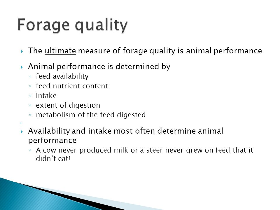  The ultimate measure of forage quality is animal performance  Animal performance is determined by ◦ feed availability ◦ feed nutrient content ◦ Intake ◦ extent of digestion ◦ metabolism of the feed digested   Availability and intake most often determine animal performance ◦ A cow never produced milk or a steer never grew on feed that it didn't eat!