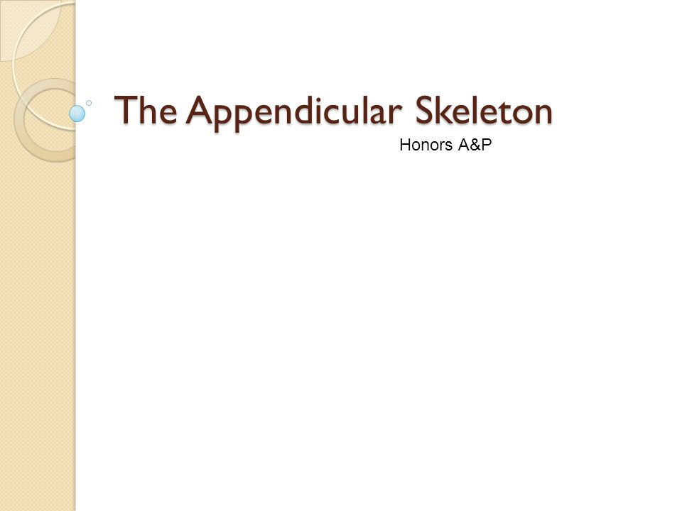 The Appendicular Skeleton Honors A&P