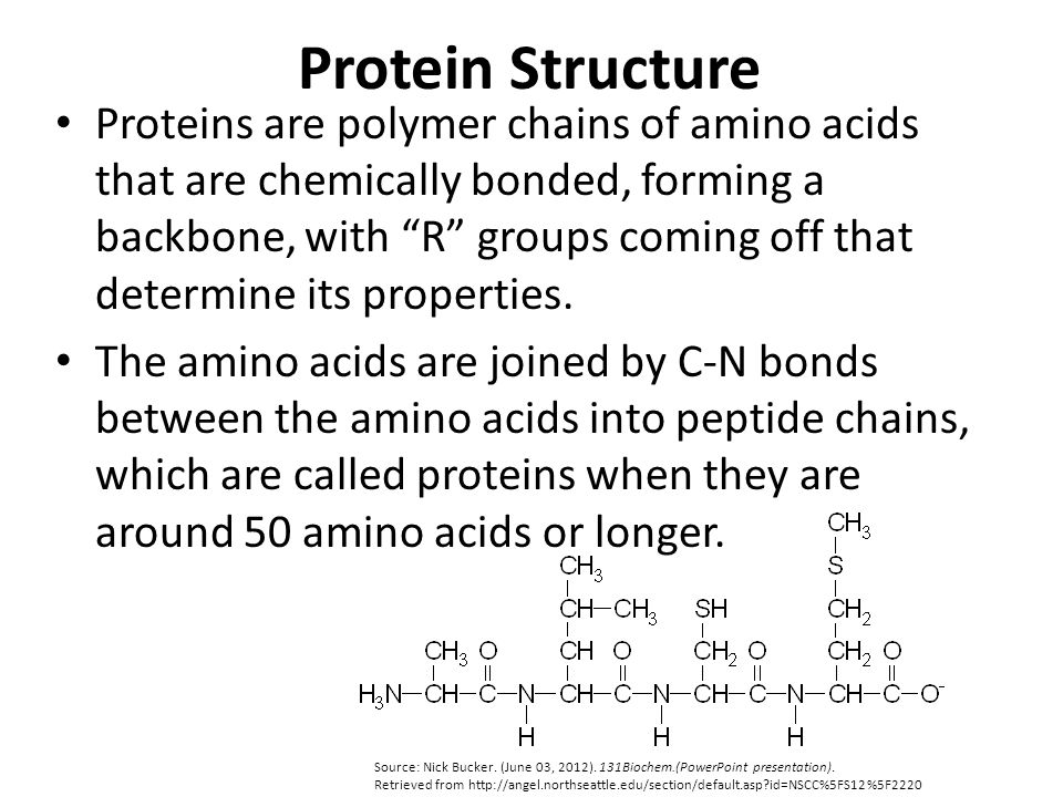 Biological Functions of Proteins Source: Nick Bucker.