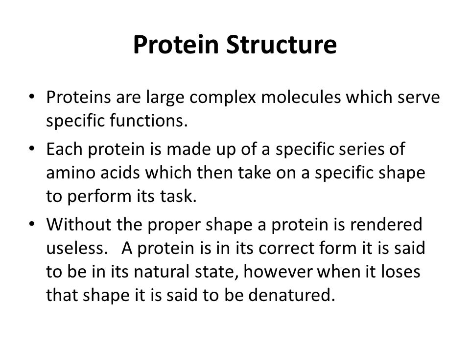 Protein Structure Proteins are large complex molecules which serve specific functions.