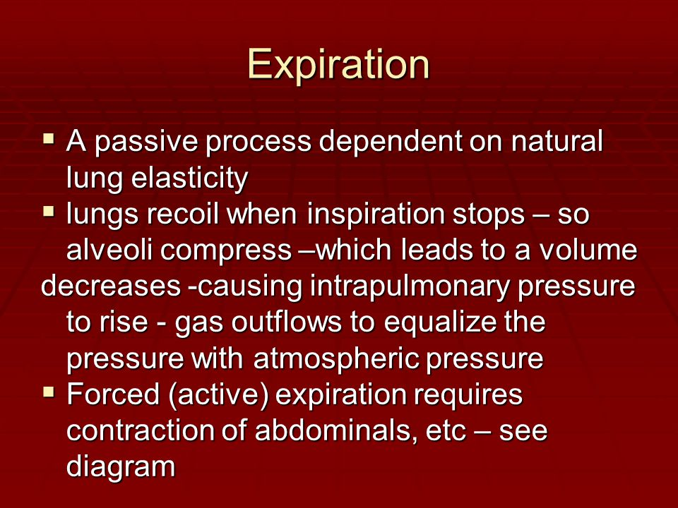 Expiration  A passive process dependent on natural lung elasticity  lungs recoil when inspiration stops – so alveoli compress –which leads to a volu