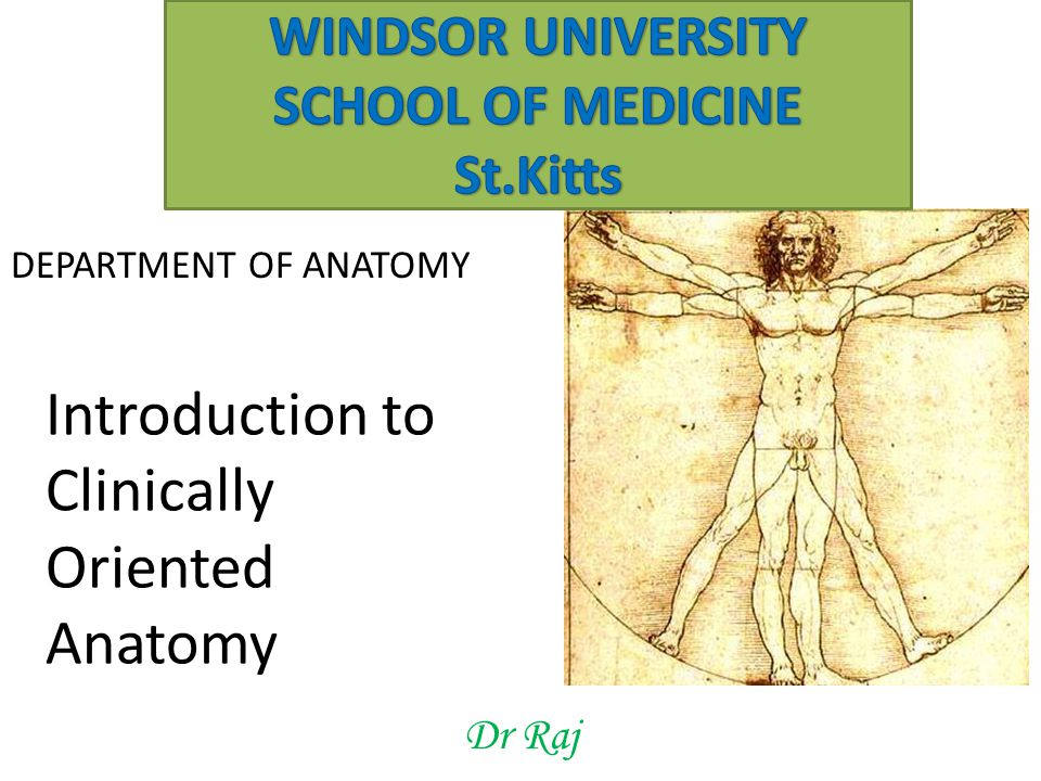 Dr Raj DEPARTMENT OF ANATOMY Introduction to Clinically Oriented Anatomy
