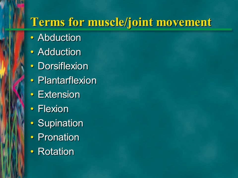 Terms for muscle/joint movement Abduction Adduction Dorsiflexion Plantarflexion Extension Flexion Supination Pronation Rotation Abduction Adduction Do