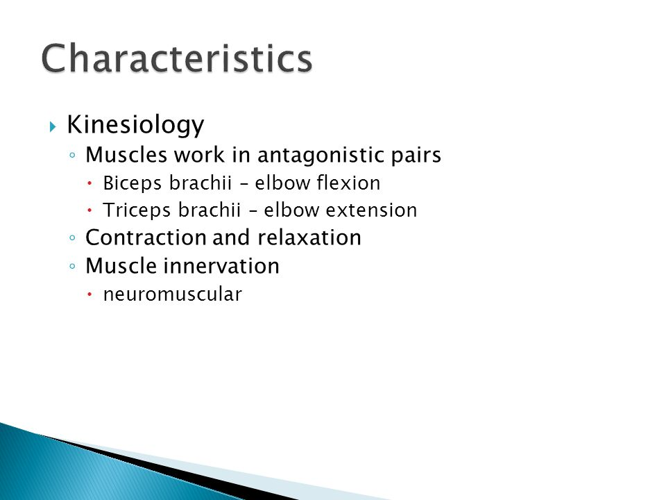  Kinesiology ◦ Muscles work in antagonistic pairs  Biceps brachii – elbow flexion  Triceps brachii – elbow extension ◦ Contraction and relaxation ◦
