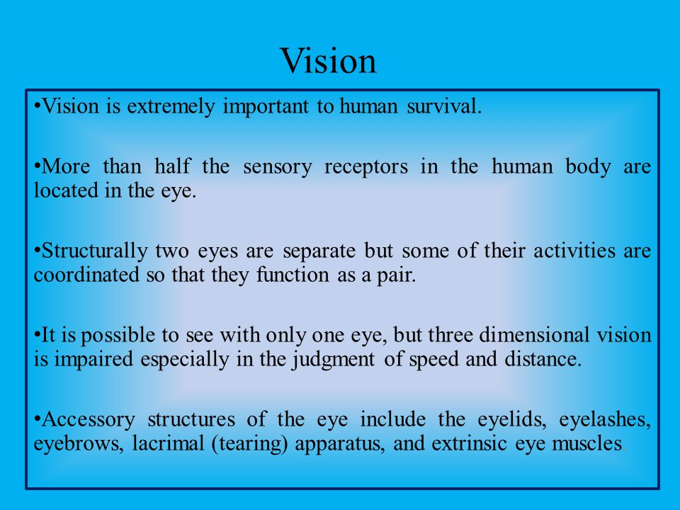 Vision Vision is extremely important to human survival. More than half the sensory receptors in the human body are located in the eye. Structurally tw