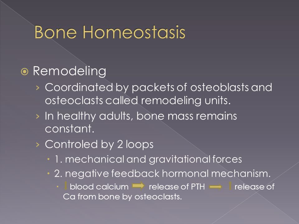 Remodeling › Coordinated by packets of osteoblasts and osteoclasts called remodeling units. › In healthy adults, bone mass remains constant. › Contr