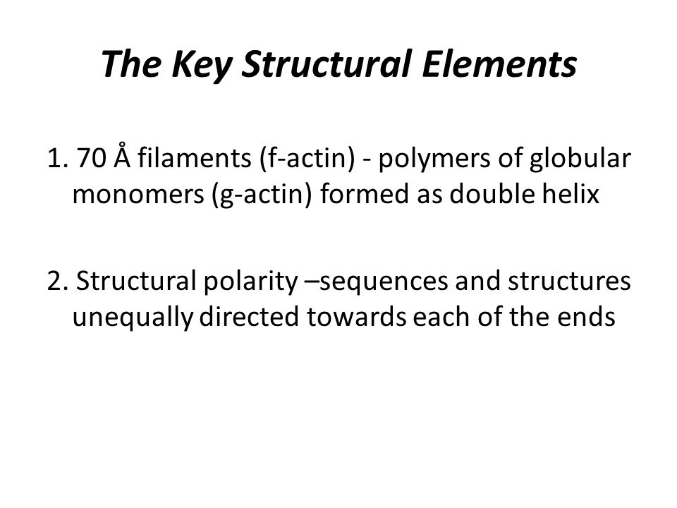 The Key Structural Elements 1.