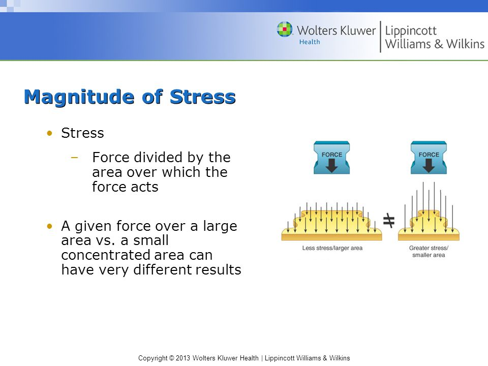 Copyright © 2013 Wolters Kluwer Health | Lippincott Williams & Wilkins Categorize Force Relative to Direction (cont.)