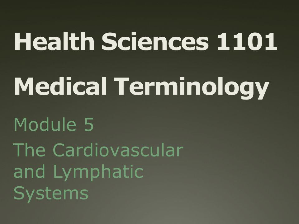 Immunology and the Lymphatic System