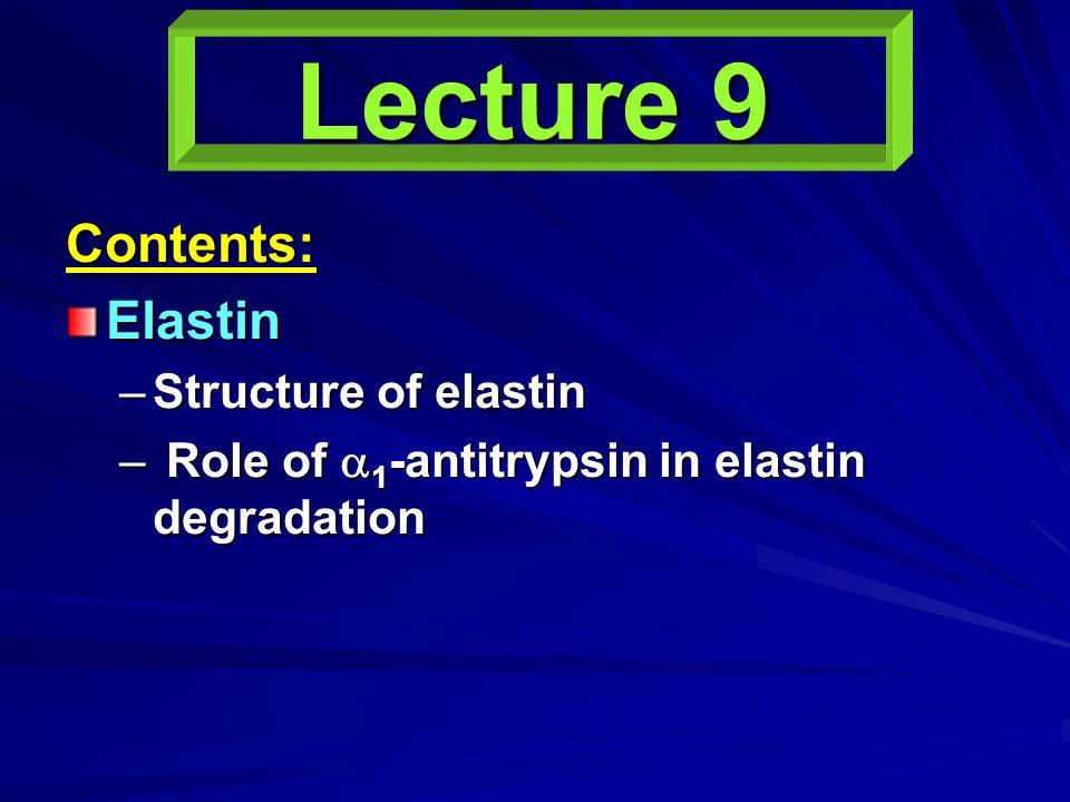 Lecture 9 Contents:Elastin –Structure of elastin – Role of  1 -antitrypsin in elastin degradation