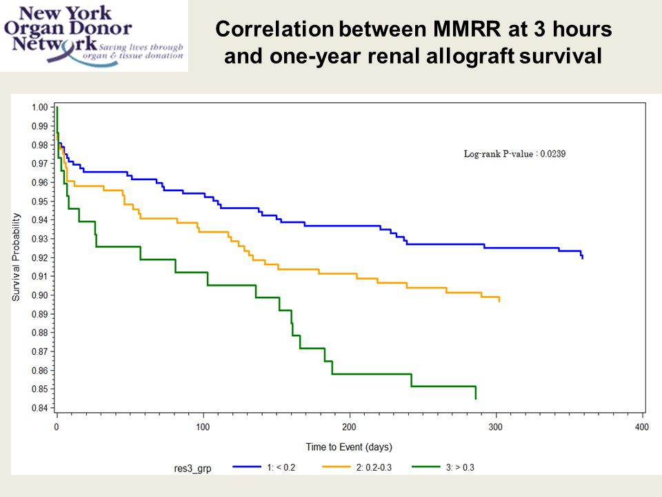 Correlation between MMRR at 3 hours and one-year renal allograft survival