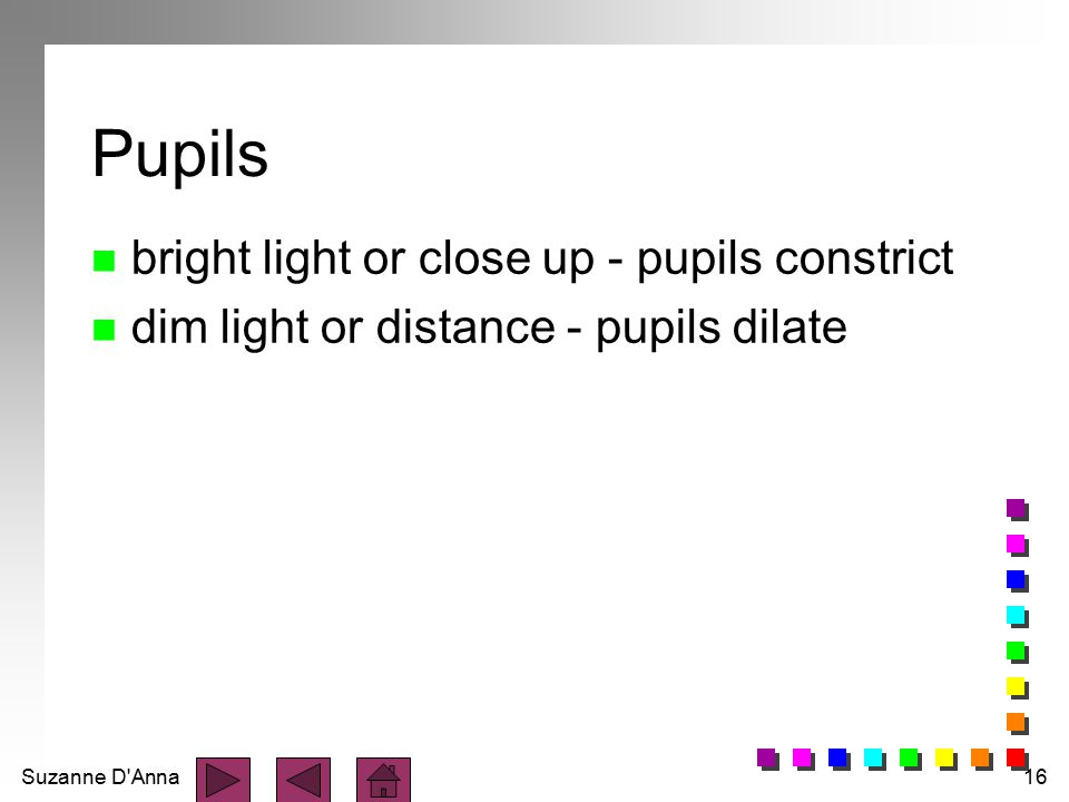Suzanne D'Anna16 Pupils n bright light or close up - pupils constrict n dim light or distance - pupils dilate
