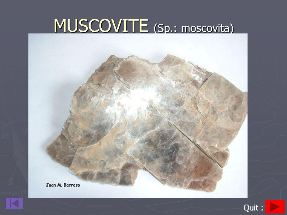 MUSCOVITE (Sp.: moscovita) Quit :
