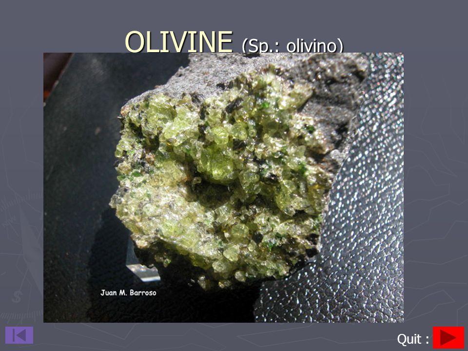 OLIVINE (Sp.: olivino) Quit :