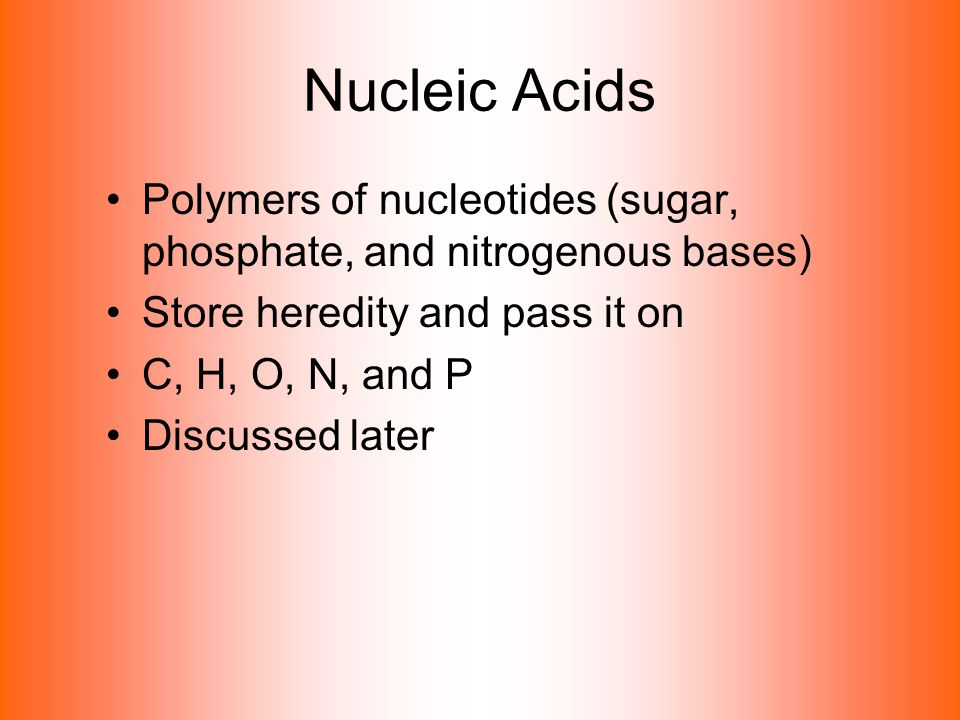 Nucleic Acids Polymers of nucleotides (sugar, phosphate, and nitrogenous bases) Store heredity and pass it on C, H, O, N, and P Discussed later