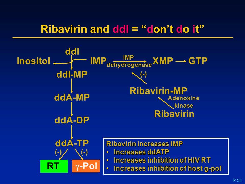 "P-35 Ribavirin and ddI = ""don't do it"" ddI ddI-MP ddA-MP ddA-DP ddA-TP RT  -Pol (-) InositolIMP XMPGTP IMP dehydrogenase Ribavirin-MP Ribavirin (-) A"