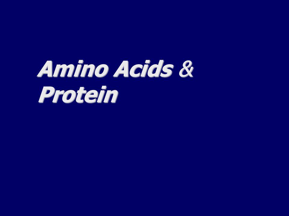 Amino Acids & Protein
