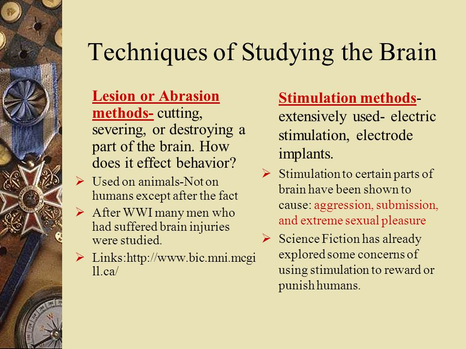 Techniques of Studying the Brain Lesion or Abrasion methods- cutting, severing, or destroying a part of the brain.