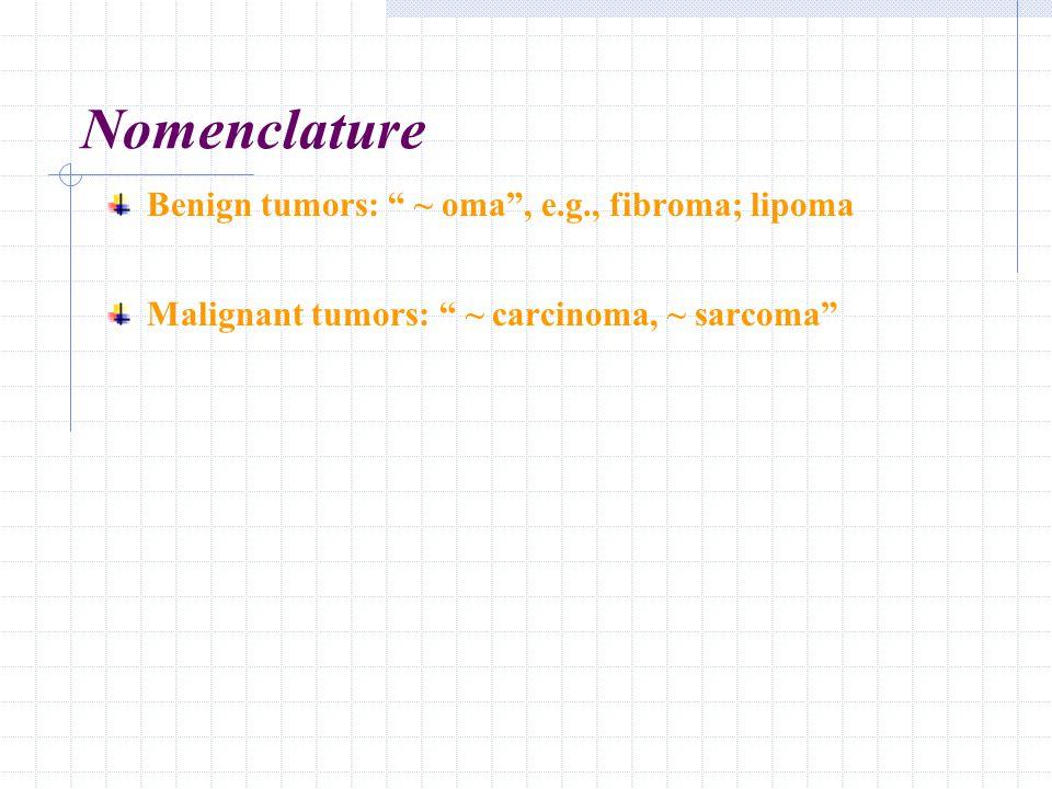 "Nomenclature Benign tumors: "" ~ oma"", e.g., fibroma; lipoma Malignant tumors: "" ~ carcinoma, ~ sarcoma"""