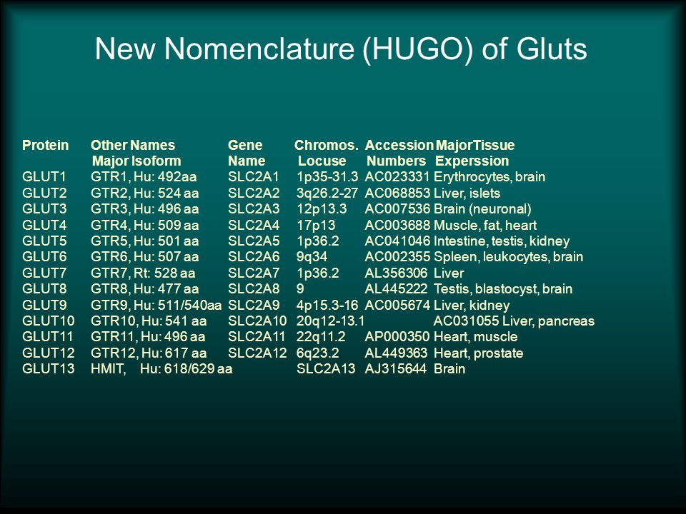 New Nomenclature (HUGO) of Gluts Protein Other Names Gene Chromos.