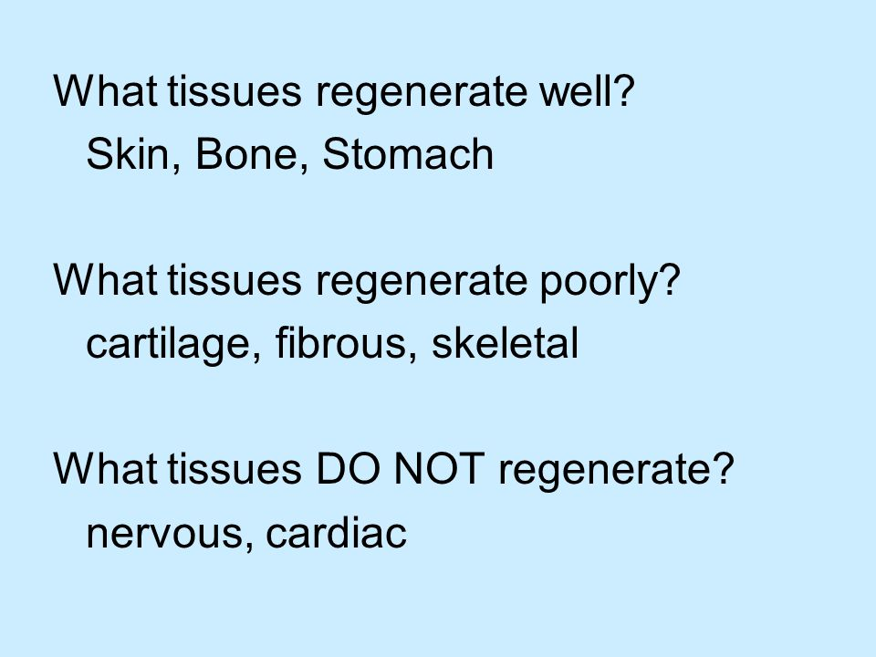 What tissues regenerate well. Skin, Bone, Stomach What tissues regenerate poorly.