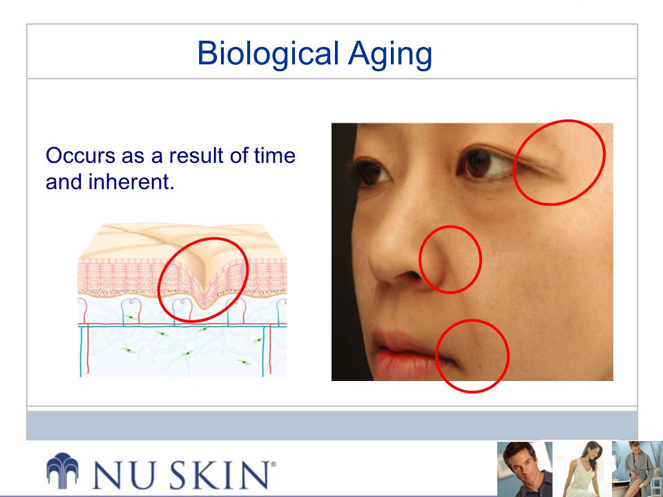 Occurs as a result of time and inherent. Biological Aging