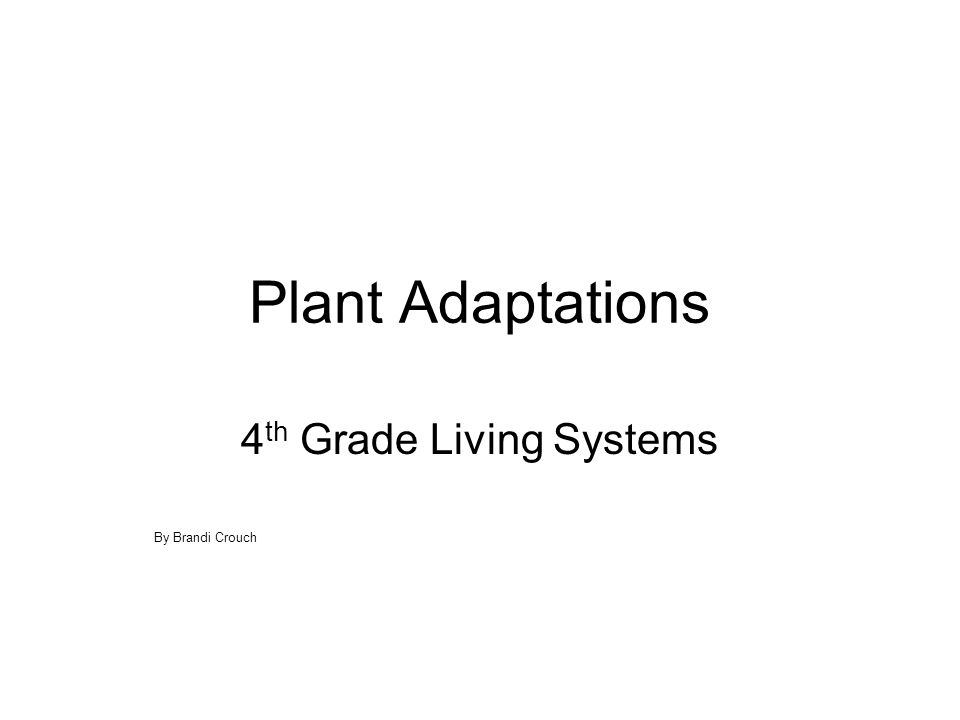 Plant Adaptations 4 th Grade Living Systems By Brandi Crouch
