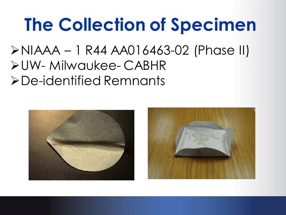 The Collection of Specimen  NIAAA – 1 R44 AA016463-02 (Phase II)  UW- Milwaukee- CABHR  De-identified Remnants