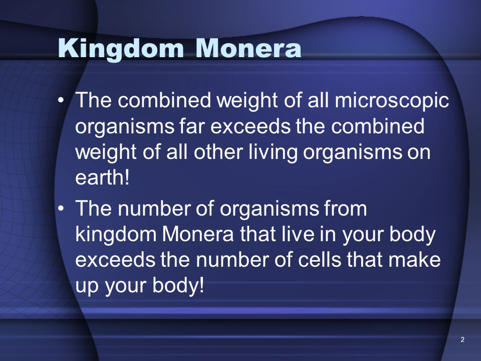Kingdom Monera The combined weight of all microscopic organisms far exceeds the combined weight of all other living organisms on earth.