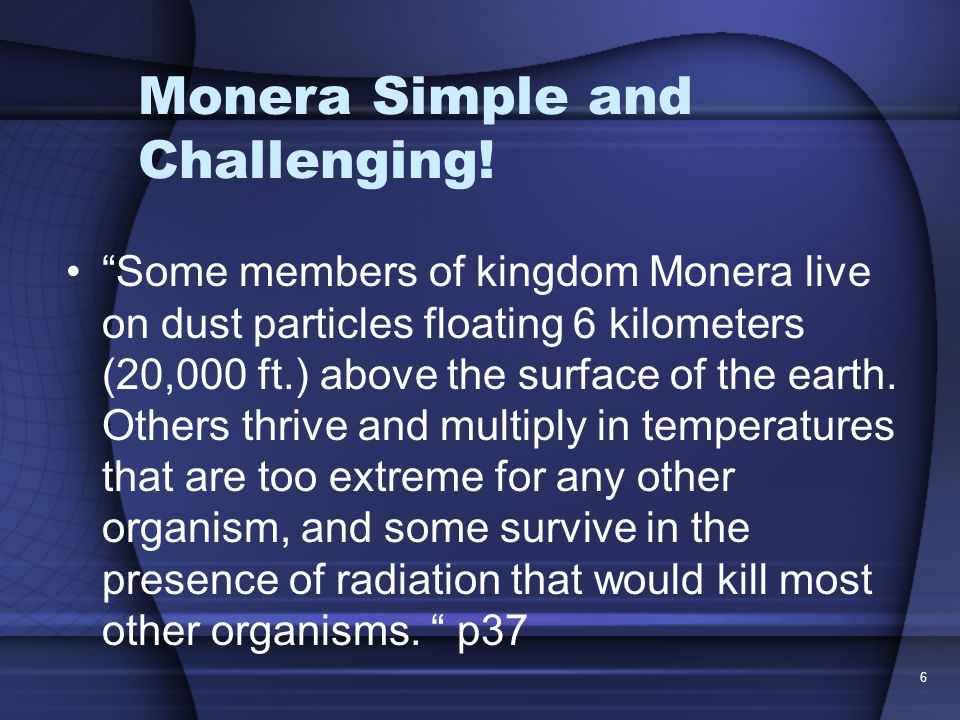 Monera Simple and Challenging.