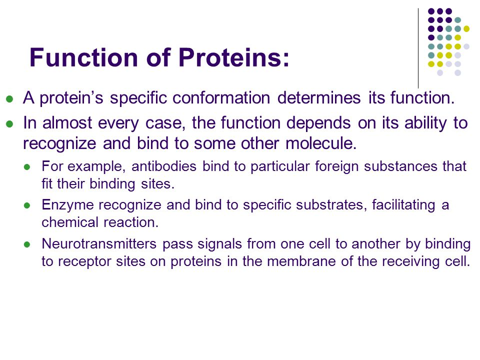 Function of Proteins: A protein's specific conformation determines its function.