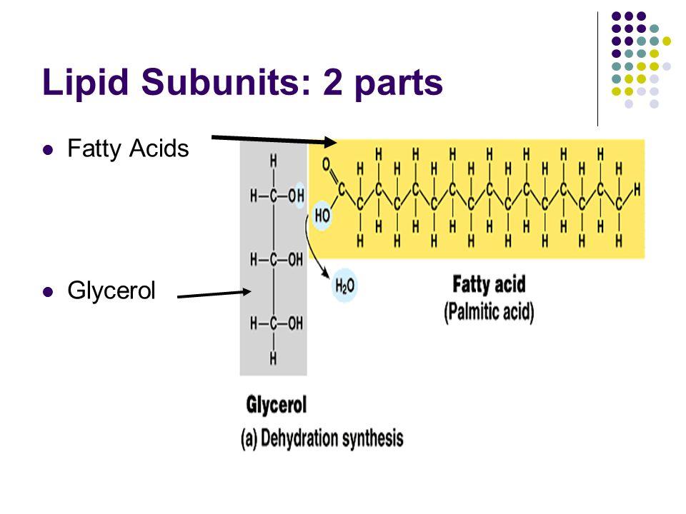 Lipid Subunits: 2 parts Fatty Acids Glycerol