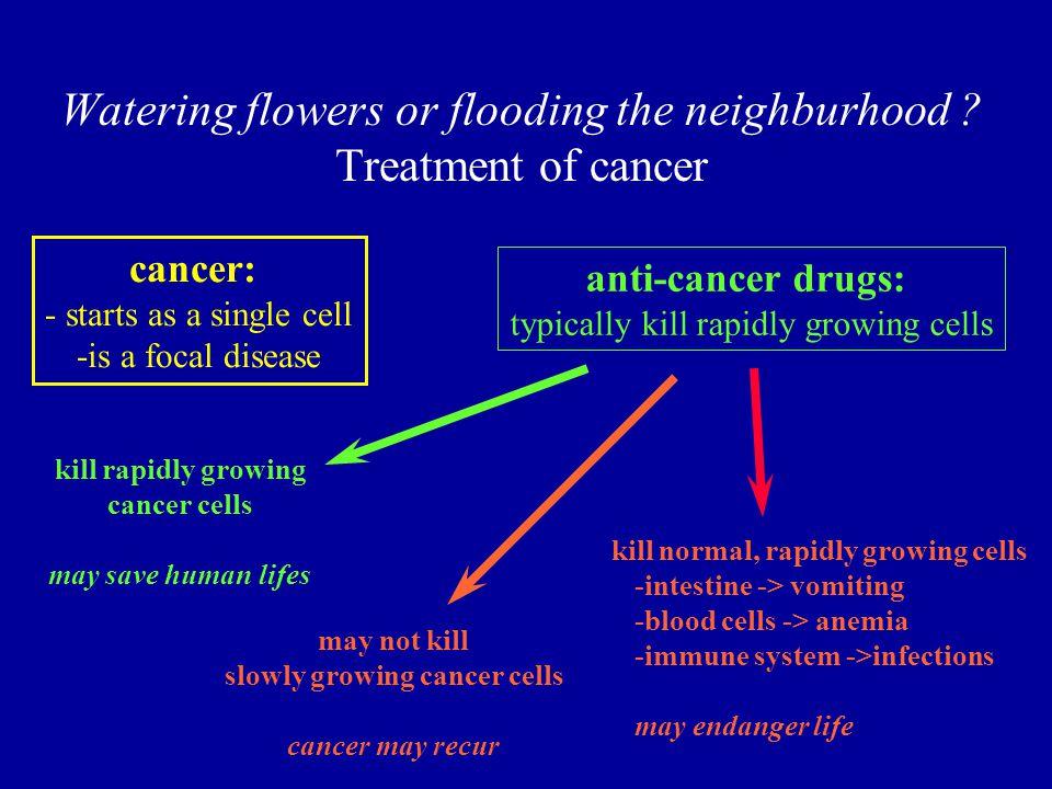Watering flowers or flooding the neighburhood .