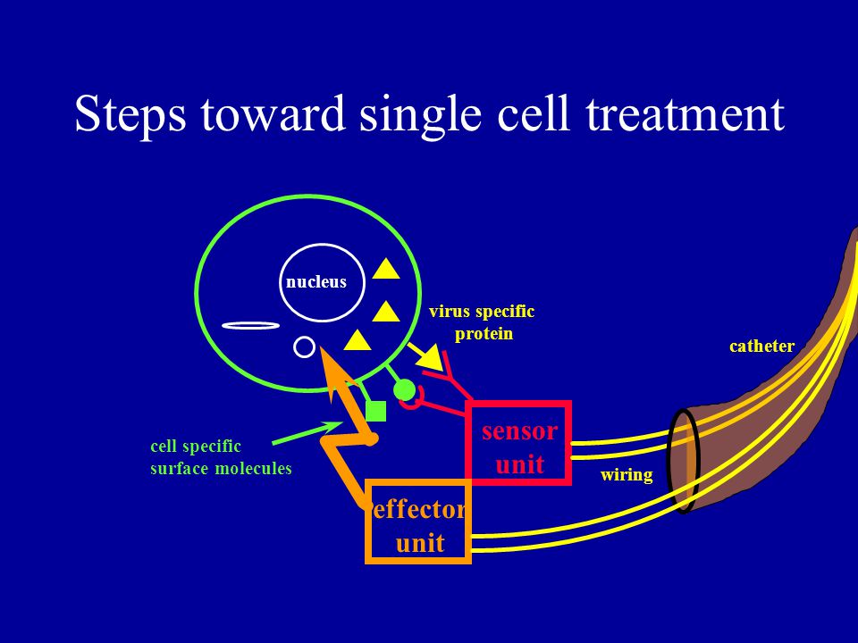 Steps toward single cell treatment cell specific surface molecules virus specific protein nucleus sensor unit wiring catheter effector unit