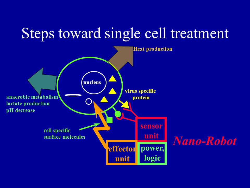 Steps toward single cell treatment cell specific surface molecules virus specific protein nucleus sensor unit effector unit power, logic Nano-Robot Heat production anaerobic metabolism lactate production pH decrease